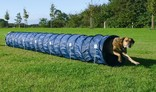 Agility Basic Tunnel