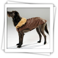Dog Fashion Caro Step Allwettermantel